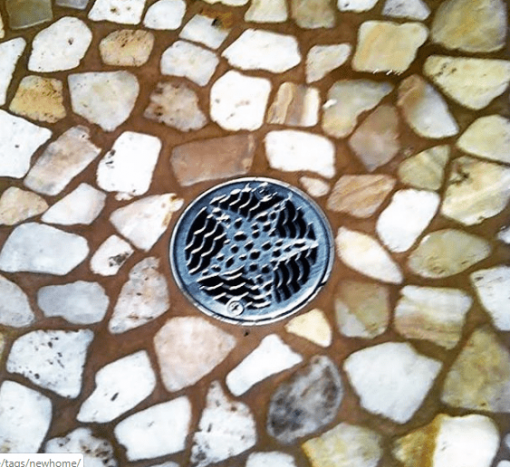 3.25 inch Star Fish round shower drain