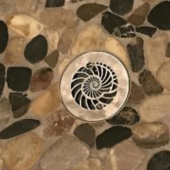 4.25 Inch Round Nautilus Shower Drain