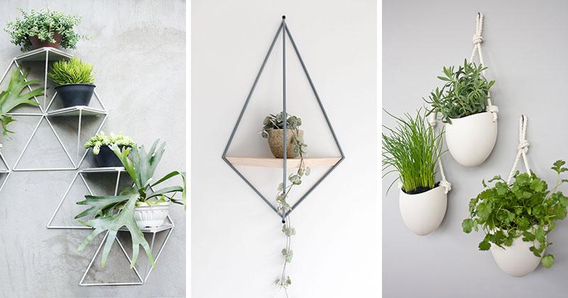Diy 10 modern wall mounted plant holders designer drains - Pflanzen an der wand ...
